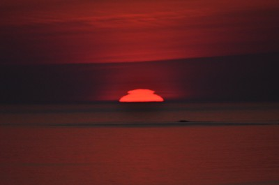 変形太陽1-1
